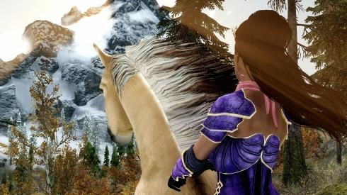 Elder Scrolls V  Skyrim Screenshot 2017.11.14 - 22.56.46.21.jpg