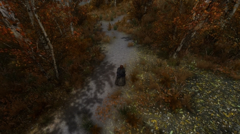 Elder Scrolls V  Skyrim Screenshot 2017.11.26 - 18.24.09.48.jpg