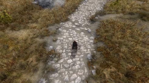 Elder Scrolls V  Skyrim Screenshot 2017.11.26 - 18.15.10.33.jpg